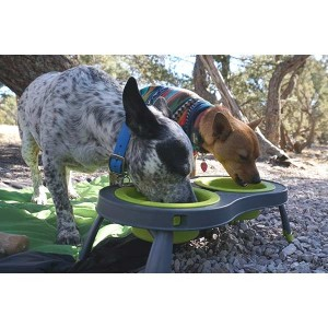 Popware Collapsible Raised Feeder - Double - Green