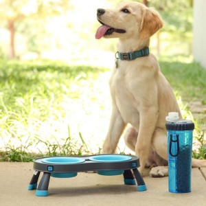Popware Collapsible Raised Feeder - Double - Blue