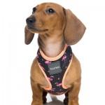 FuzzYard Dog Harness - Fabmingo - Medium