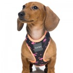 FuzzYard Dog Harness - Fabmingo - Small