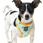 FuzzYard Dog Harness - Tucson - X Small