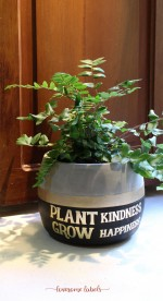 Lovesome Labels - Cement Pot Small (FREE Personalisation)