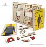Touchwood Design - Organ Anatomy Puzzle